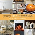 chic pumpkin decorating