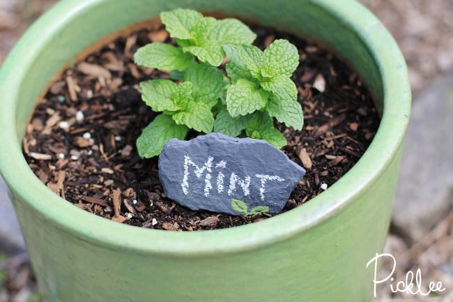 chalky-finish-garden-marker-rocks5