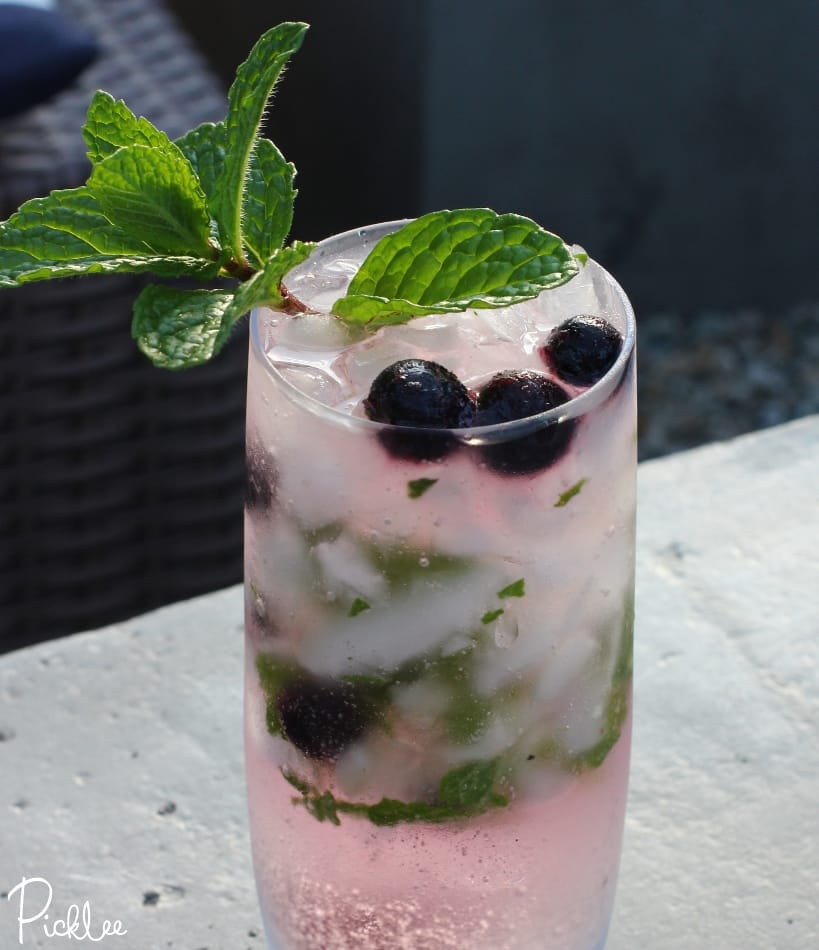 blueberry vodka mojito skinny 2